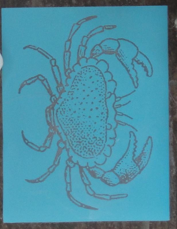 coastal-crab-chargers-supplies-2-617x800