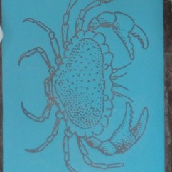 coastal-crab-chargers-supplies-2-617x800