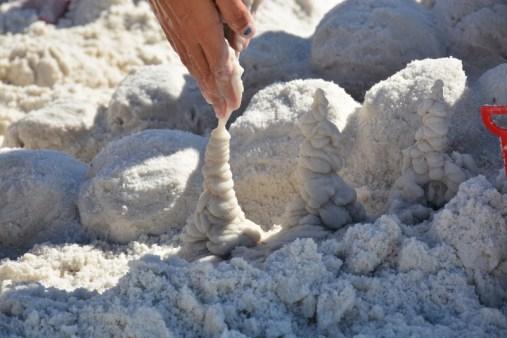sand-trees-800x533