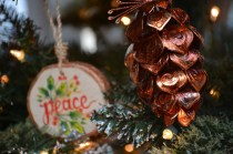 ornaments-pinecone-and-wood-800x533