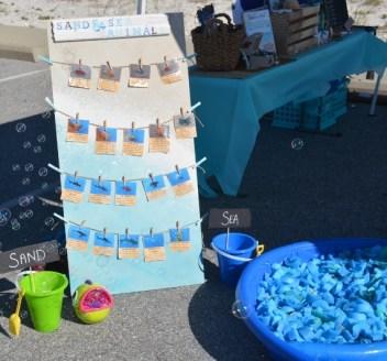 Sand and Sea Animals Display Board