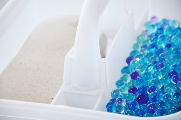 Sand and Sea Animals Ocean Sensory - add sand and sensory beads