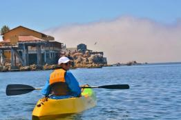 kayaking in Monterey Bay 3