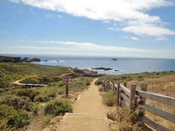 garrapata state park bluff trail