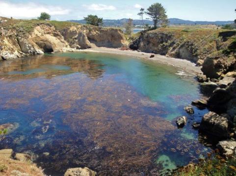 point lobos bay