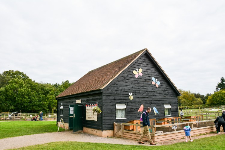 Happy Days: 5 Great animal attractions to visit in Southern England. Image of small animal farm house at Wellington Country Park