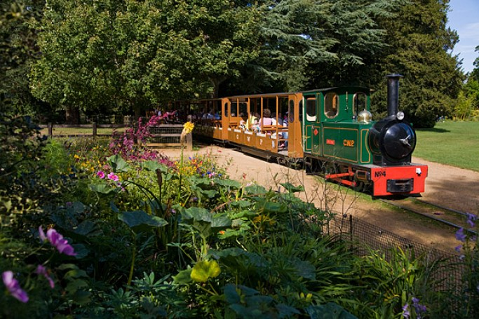Happy Days: 5 Great animal attractions to visit in Southern England. Image of the train that operates within the grounds of the Cotswold Wildlife Park