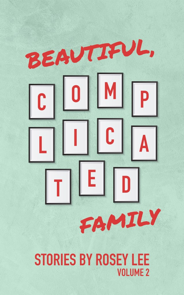 Beautiful Complicated Family Book Jacket Vol 2
