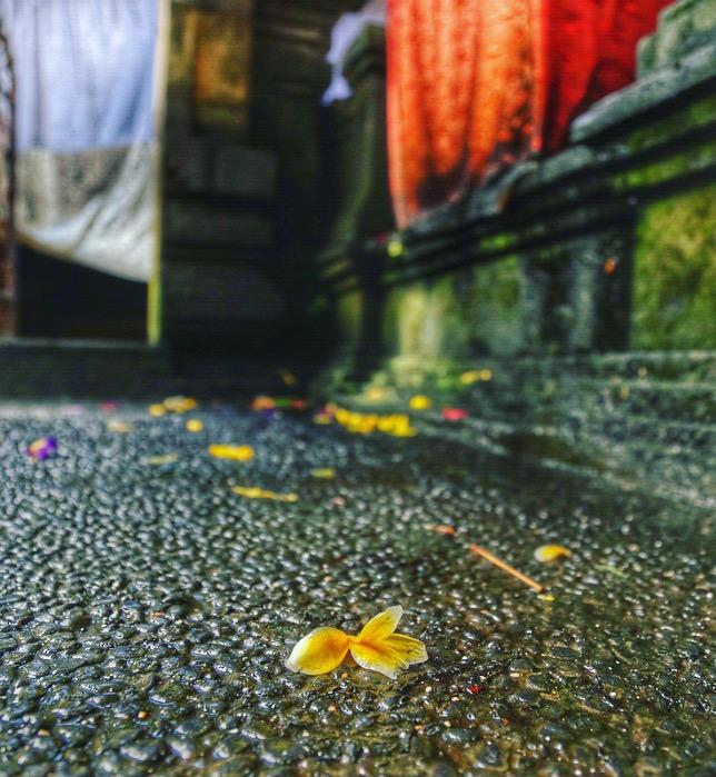 High Priestess Bali