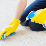 How to Get Grease Out of Carpet