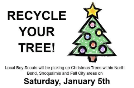 Christmas Tree Pick Up.Annual Boy Scout Christmas Tree Pickup Happens January 5th