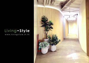 Livingstyle 000 catalog