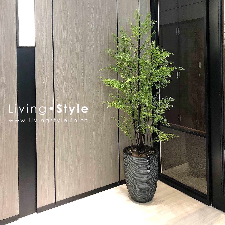 เฟิร์น เฟิร์นก้านดำ ตกแต่งบ้าน Livingstyle ดอกไม้ปลอม ต้นไม้ปลอม ดอกไม้ประดิษฐ์ ต้นไม้ประดิษฐ์ ตกแต่งบ้าน สวนแนวตั้ง สวนหย่อม