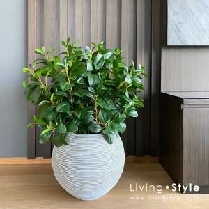 กระถาง ต้นไม้ปลอม ใบไม้ปลอม %%sep%% Livingstyle ตกแต่งบ้าน แจกันดอกไม้ ดอกไม้ปลอม ดอกไม้ประดิษฐ์ ต้นไม้ประดิษฐ์ สวนแนวตั้ง สวนหย่อม จัดสวน