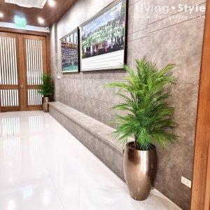 3 ปาล์มไผ่ ต้นปาล์มไผ่ ตกแต่งบ้าน Livingstyle ดอกไม้ปลอม ต้นไม้ปลอม ดอกไม้ประดิษฐ์ ต้นไม้ประดิษฐ์ ตกแต่งบ้าน สวนแนวตั้ง สวนหย่อม