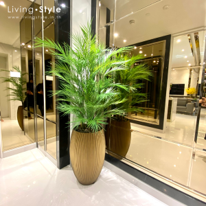 PPL0032 Bamboo Palm with Golden Pot