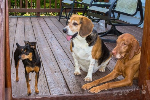 A rare picture of all three them together!