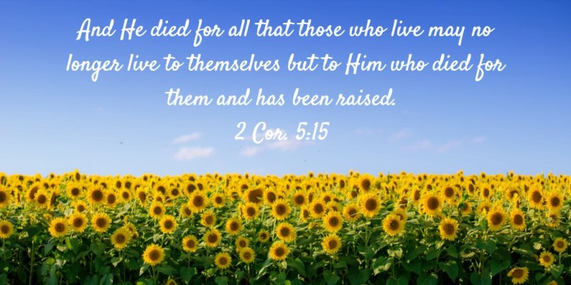 And He died for all that those who live may no longer live to themselves but to Him who died for them and has been raised. 2 Cor. 5:15