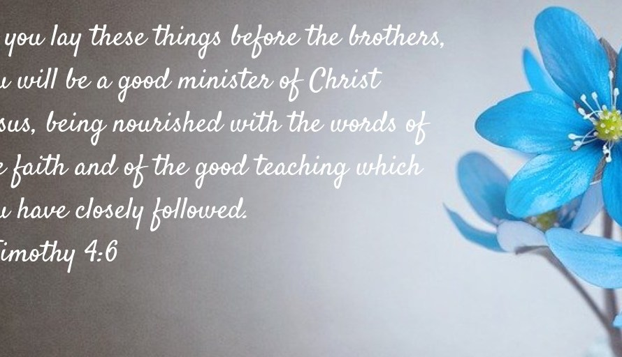 Appreciation of the leading brothers' faithful speaking, with supporting verses