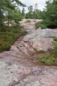 This is the Chikanishing Trail.