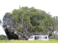 Tsunami rock, Tonga.