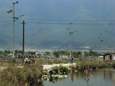 Chinese solar panels.