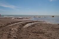 Woodbine beach lagoon.