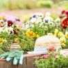 ガーデニング庭花壇の作り方【初心者の人に知ってほしい 基礎知識】