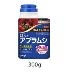 3orutoran-dx