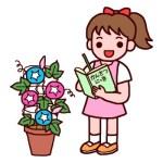 アサガオの育て方と花言葉【夏に咲くガーデニング草花】