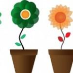 鉢花を枯らさない効果的な肥料の与え方!
