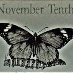 11月10日生まれの運勢と性格【星座/占星術とタロットで導く誕生日占い】