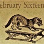 2月16日生まれの運勢と性格【星座/占星術とタロットで導く誕生日占い】
