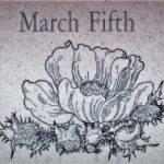 3月5日生まれの運勢と性格【星座/占星術とタロットで導く誕生日占い】