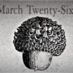 3月26日生まれの運勢と性格【星座/占星術とタロットで導く誕生日占い】