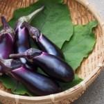 なす/茄子の栄養は暑い夏におすすめ!【調理別の栄養素を比較】