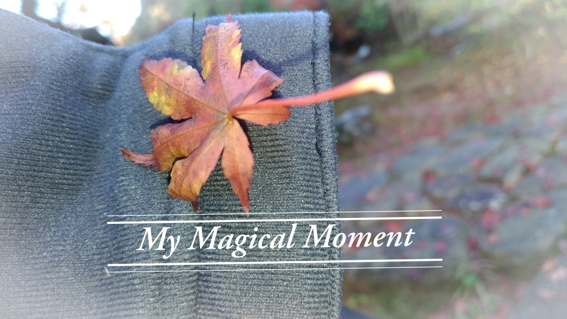 My magical moment 奇妙的感覺