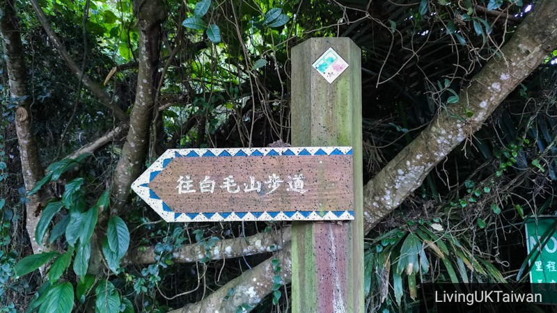 Hiking at Mount Baimao, Taiwan