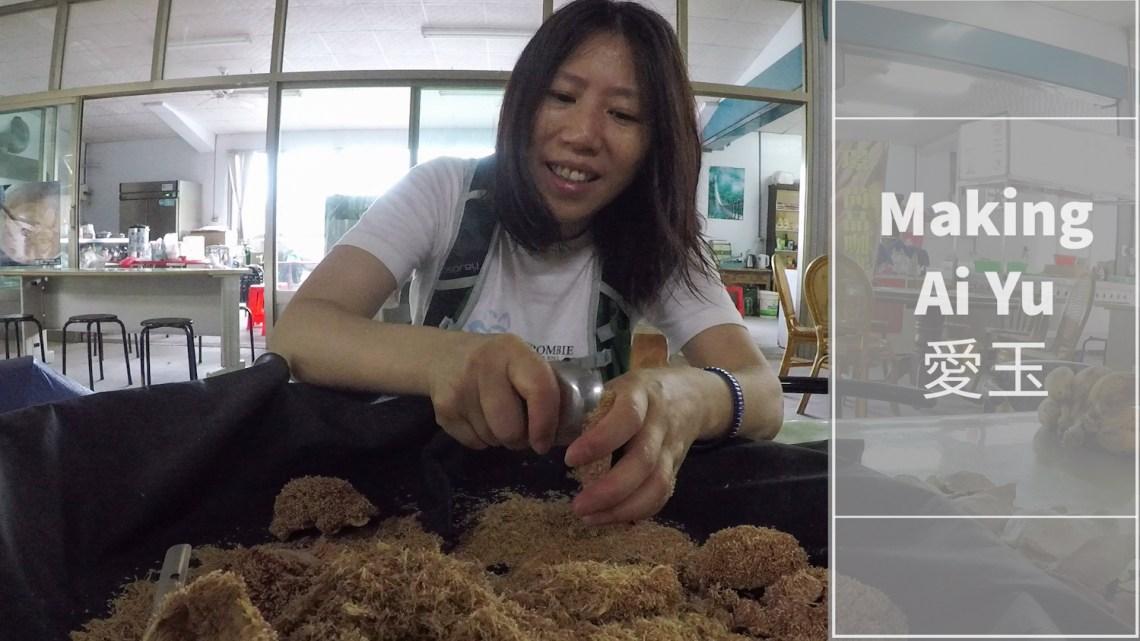 Making Ai Yu  台灣獨有的美食愛玉