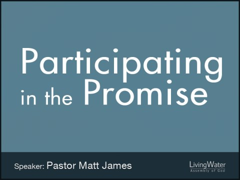 Participating in the Promise