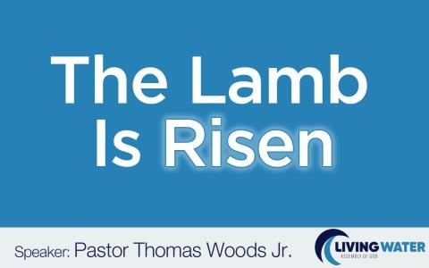 The Lamb Is Risen!