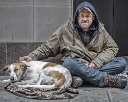 Should a homeless person own a dog?