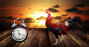 Daylight savings time can be hazardous to your health