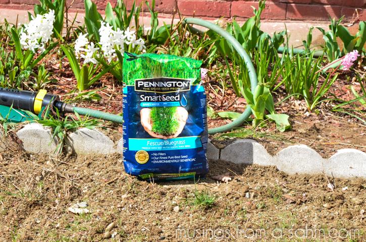 Pennington Smart Seed bag on lawn