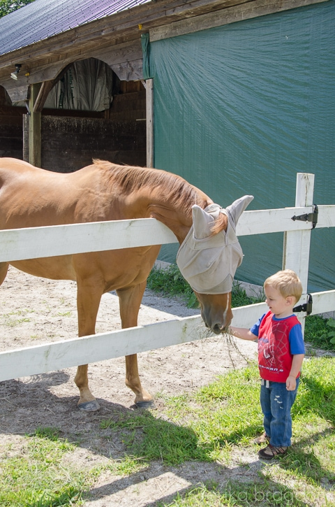 1308_Emily horseback_391