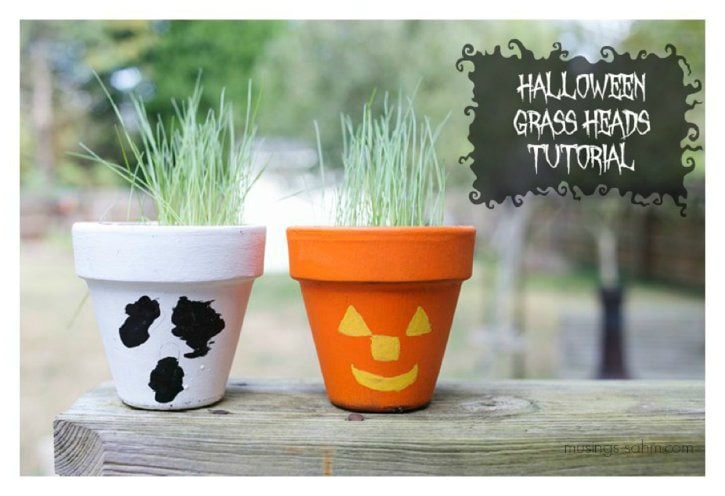 Halloween Grass Heads: kids will love making their own scary pot, then planting and caring for their grass. Once it's grown, they can cut it and tie the grass into fun styles!