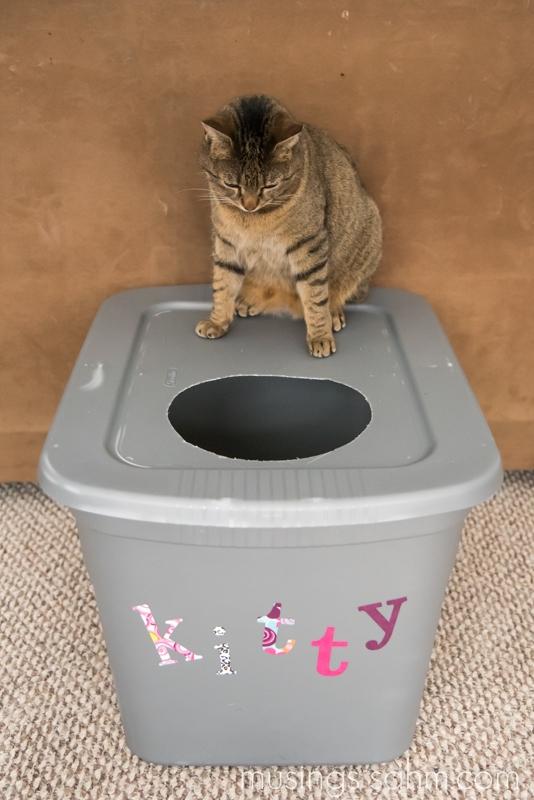 Fresh 4 Life Cat Litter Reviews