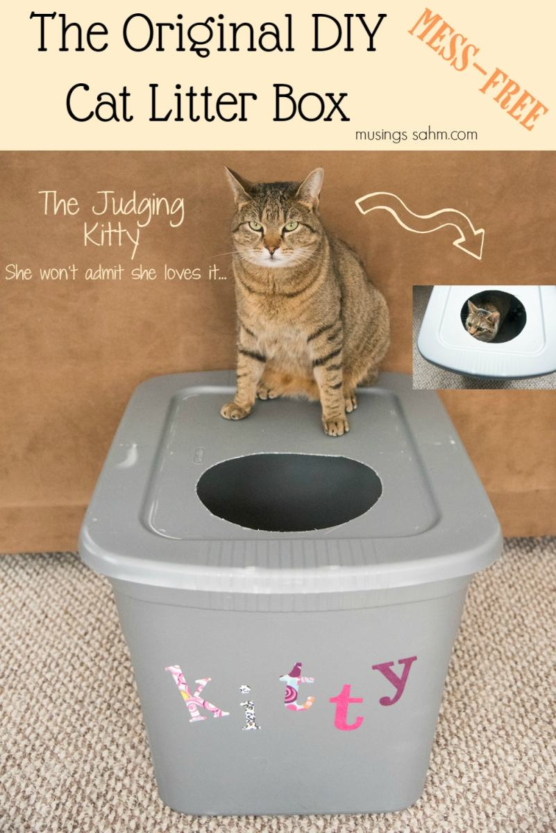The Original Diy Mess Free Cat Litter Box Living Well Mom