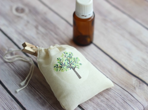 how-to-make-a-carsick-air-freshener