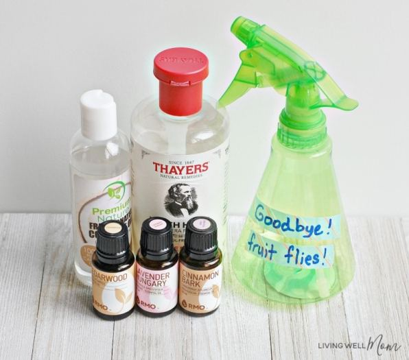 DIY Natural Fruit Fly Trap + Essential Oil Spray - Living Well Mom
